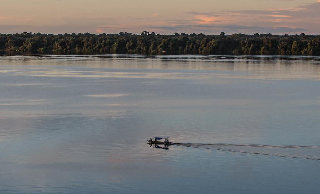 20190427 Amazonas - Anavilhanas National Park 231-2.jpg