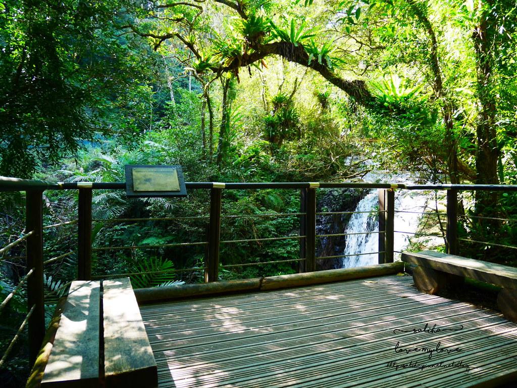宜蘭礁溪登山踏青爬山林美石磐步道瀑布 (2)