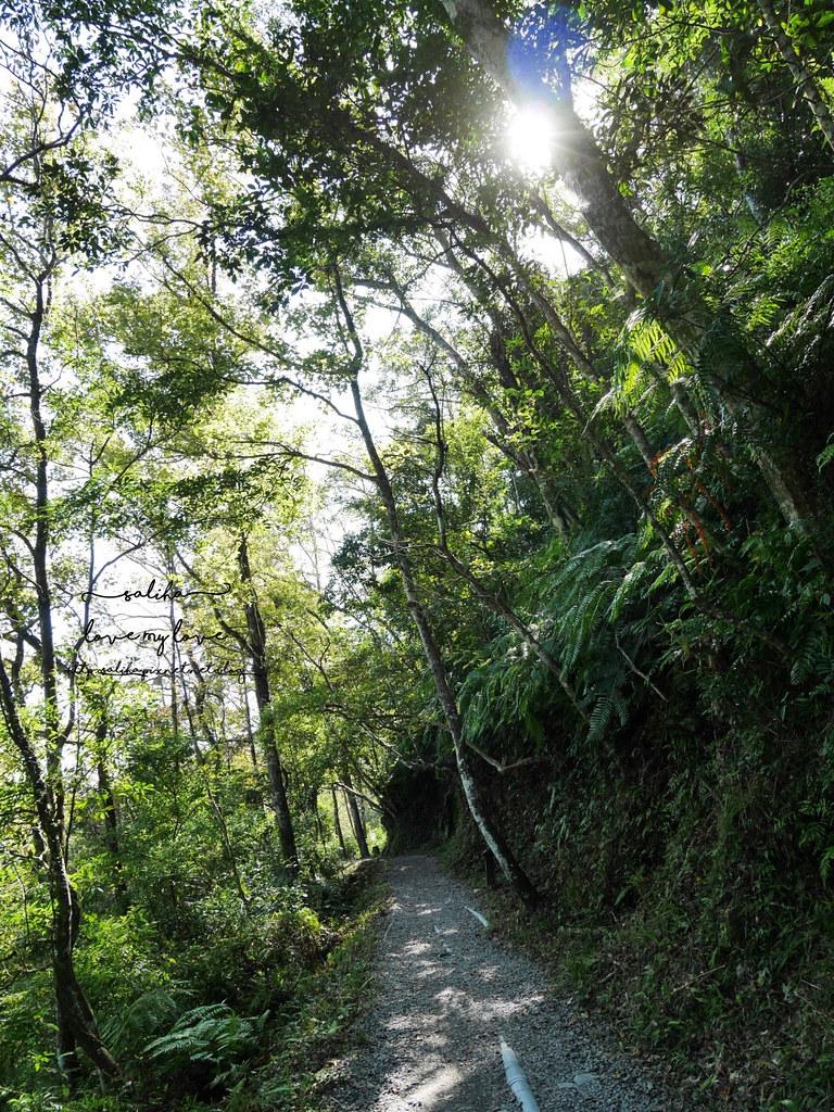 宜蘭礁溪一日遊兩天一夜景點行程推薦林美石磐步道 (4)