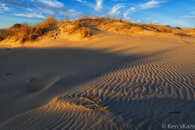 Sand Dune and Shadows