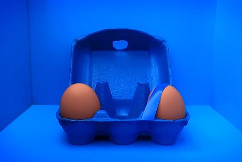 Two eggs in a carton
