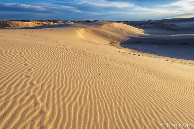Sunset Light on Sand Dunes