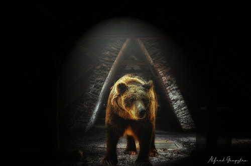 Mommy, There's A Bear In The Attic!