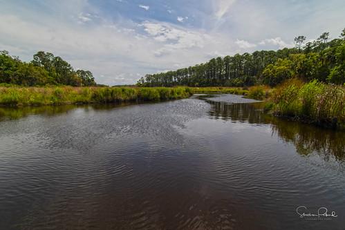 bulowcreek wetlands landscape paisaje