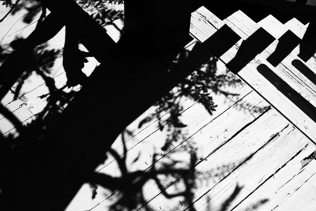 #Bwproject2019_9of26-light-and-shadow
