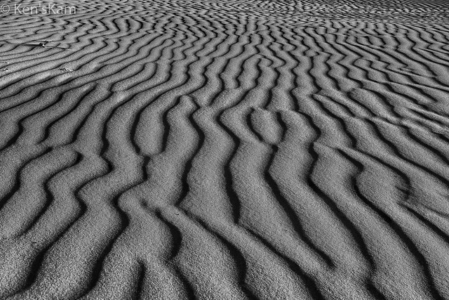 Sandhills Abstract