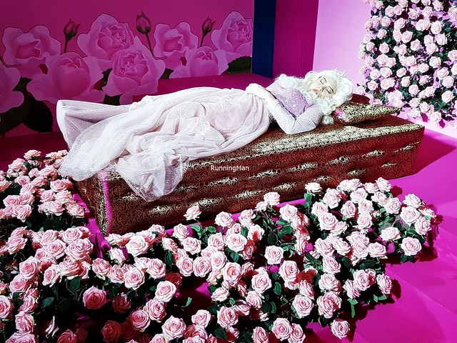 Sleeping Beauty's Resting Place