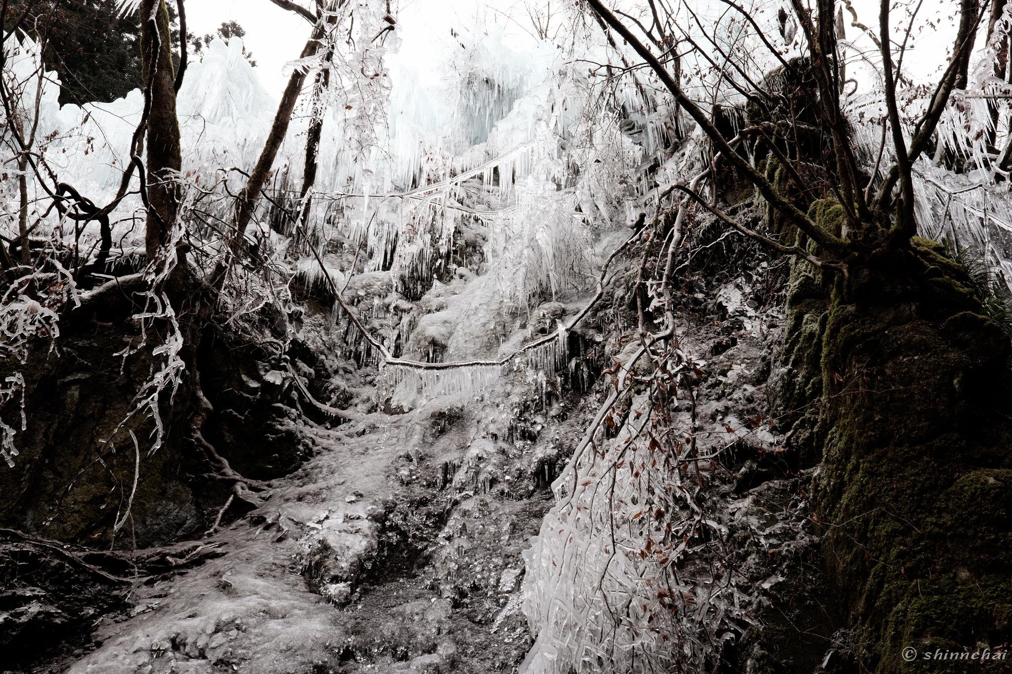2月の撮影スポット 作例 絶景 尾ノ内百景氷柱 幻想的