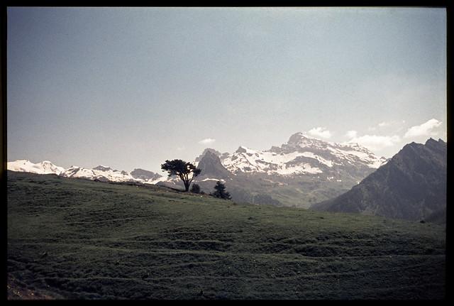 Alpe Metzan