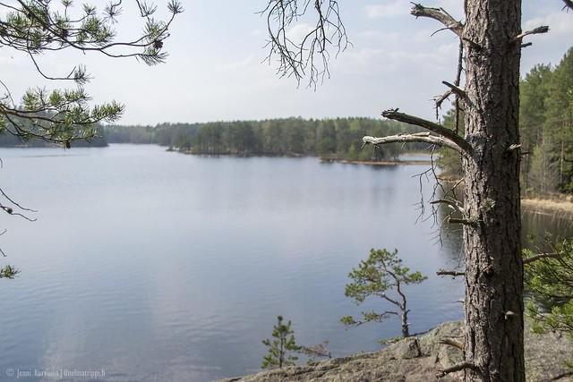 Järvimaisema Teijon kansallispuistossa Matildanjärven rannalla
