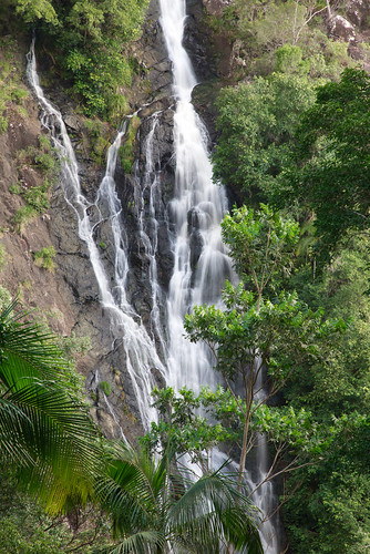 australia queensland sunshinecoast montville flaxton kondilillafalls blackallrange water waterfall trees cliff rocks forest rainforest