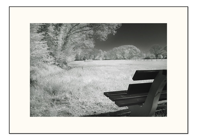Landscape beauty - infrared 04