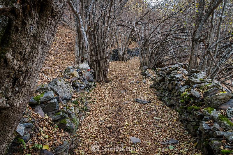 Camin dera Ribèra