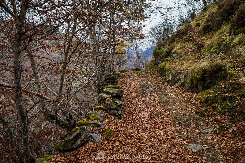 Camin de Carlac