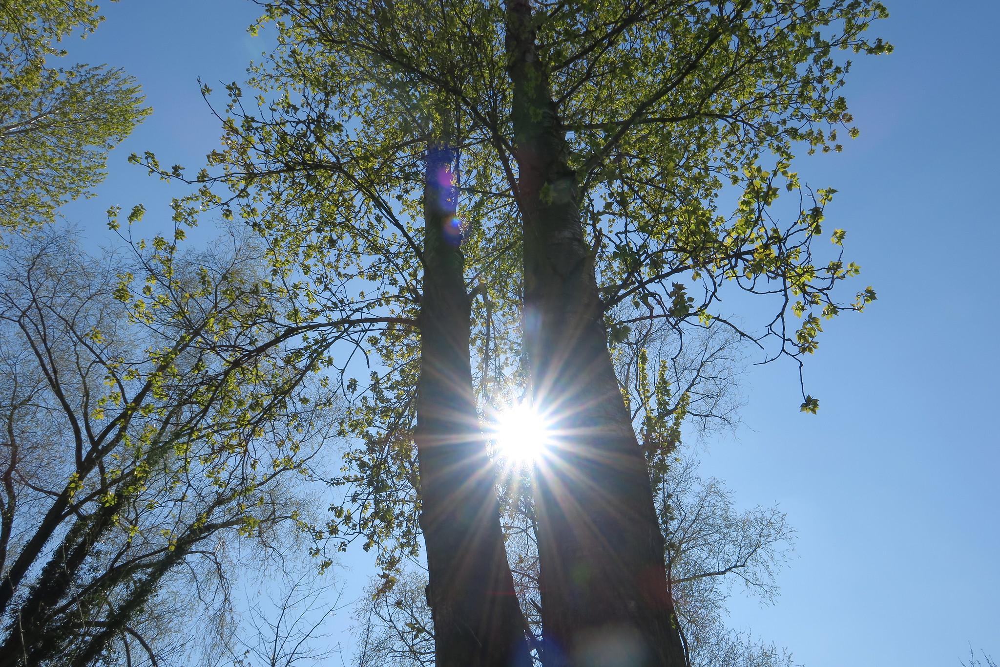 Resultado de imagen de jodage  Sunny flickr