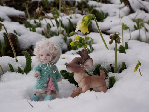 Nora and Rudolph are doing some springtime exploring.
