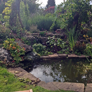 garden56