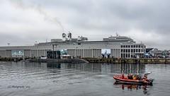 Vessels of the sea - Zodiac, Submarine, Cruiseship