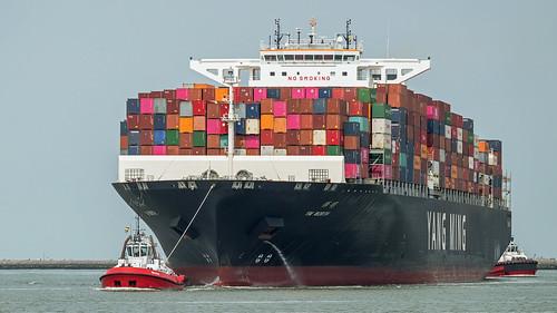 Beagle & Rotterdam | by kiekjesdief.nl/schepen