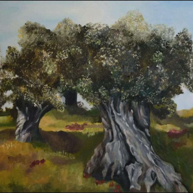 עצי זית ארץ ישראל שבעת המינים פרידה פירו ציירת אמנית ישראלית ציירות אמניות ישראליות צבעי שמן