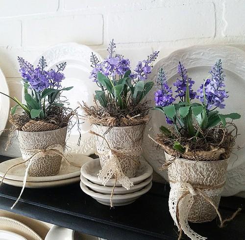 lavendar pots