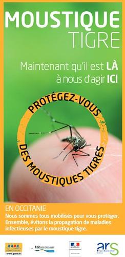 lutte moustique 2