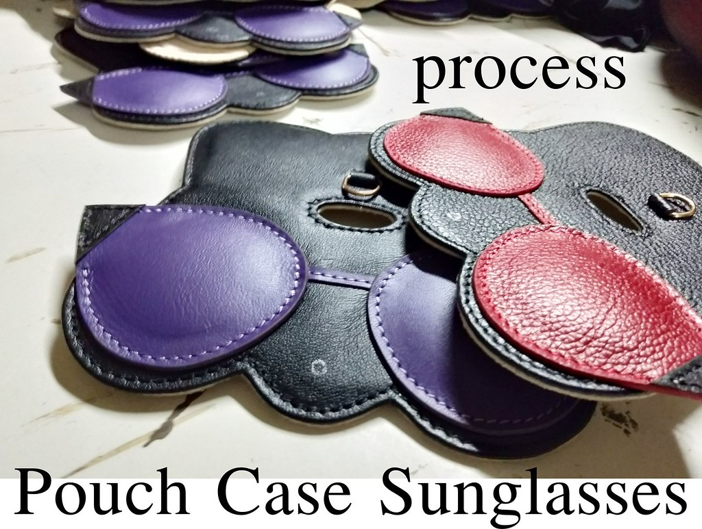 process pouch case sunglasses