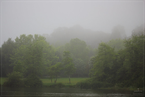 Foggy Day. Porto City Park, 09-05-2019 | by JoãoP74