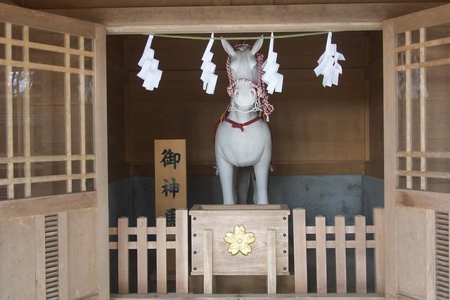 fujisengenjina_018