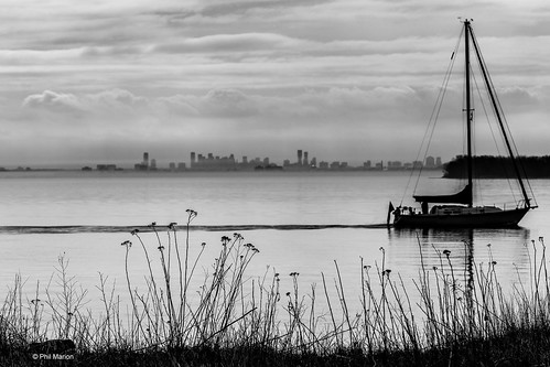 Sail boats drifts by Leslie Street Spit with Mississauga skyline in the background | by Phil Marion (177 million views - THANKS)