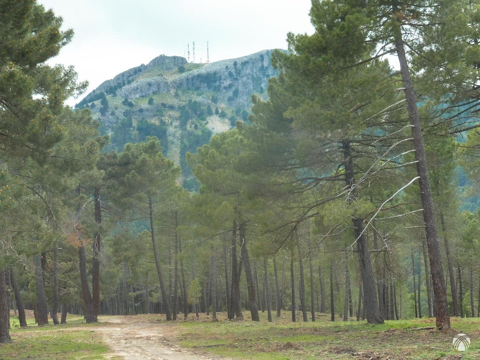 En el descenso se aprecia una vira practicable para alcanzar la cumbre del Padroncillo