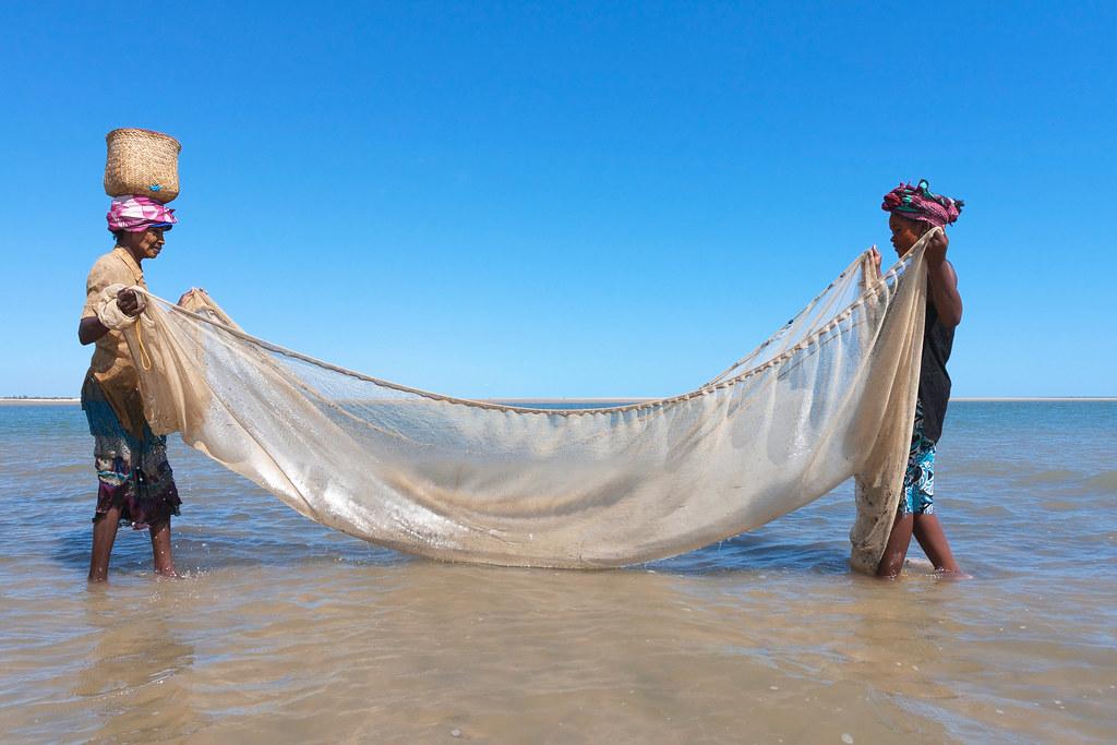 馬達加斯加Vezo族婦女從事漁業活動。 來源:sunsinger/Shutterstock.com 圖片由IPBES提供。
