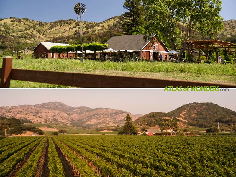 Wine Country location