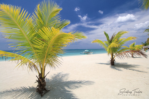 portavega beach dimasalang masbate island bicolregion philippines palms sand landscape seascape sea seaside shore coast sky cloud outdoor