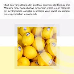 Info lebih lengkap tentang DEMAM & pembelian Essenzo LEMON Essential Oil, silakan klik link berikut:   bit.ly/harga-LEMON bit.ly/harga-LEMON bit.ly/harga-LEMON . . Tambahan kombinasi essential oil * Lemon + Lavender dapat meningkatkan daya tahan tubuh ata