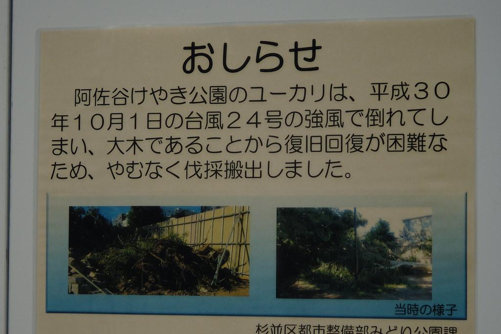 A7ii fujinon 55mm f2.2