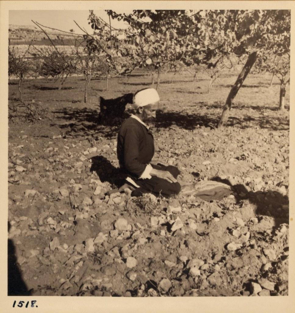 29. Мужчина молится, а его женщина пашет возле Хеврона. 8 декабря