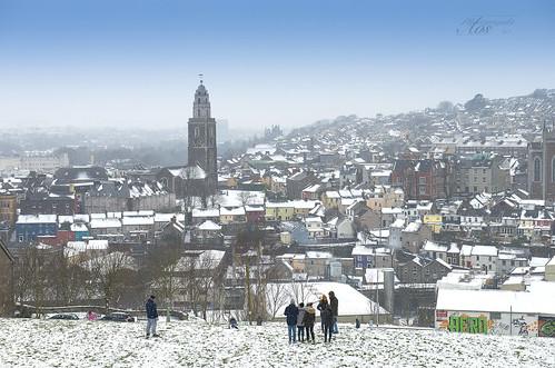 Snowy Bells Field