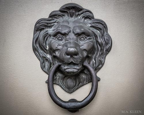 A Lion's Grip