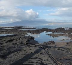 Galapagos Islands April 2019