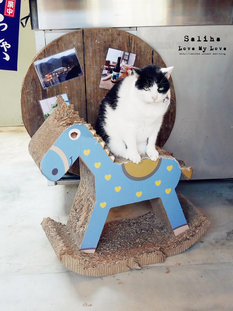 新北瑞芳不限時間有wifi咖啡廳猴硐Empress Gallery Catwalk 219有貓咪下午茶 (2)