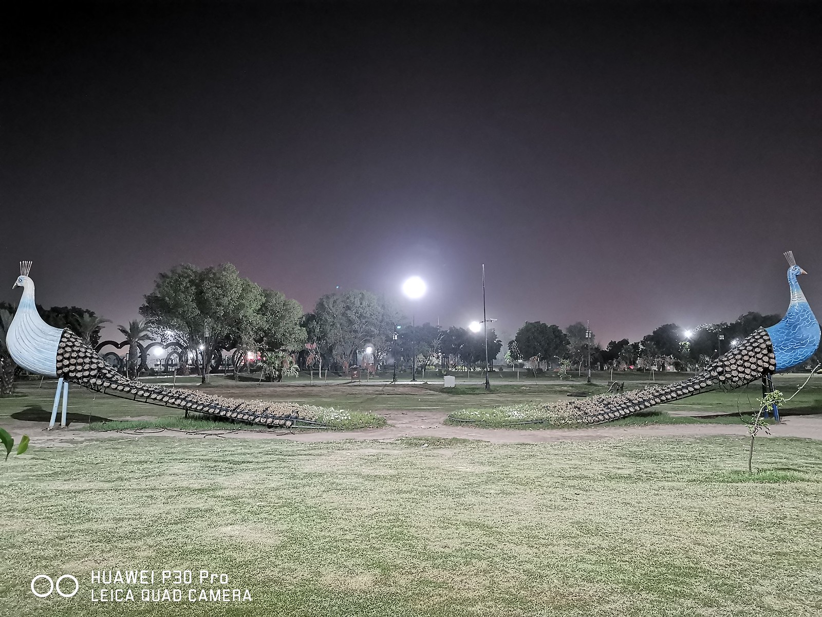 Park Picture at night with Auto mode on Huawei P30 Pro