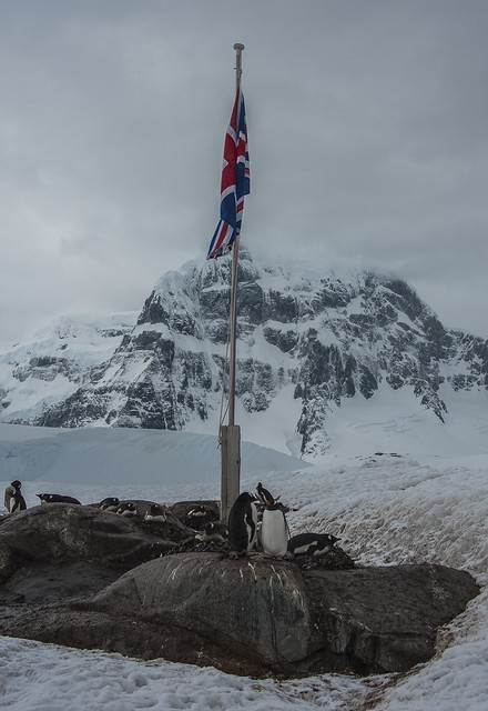 ... Port Lockroy, comitato d'accoglienza del continente antartico (02) ...