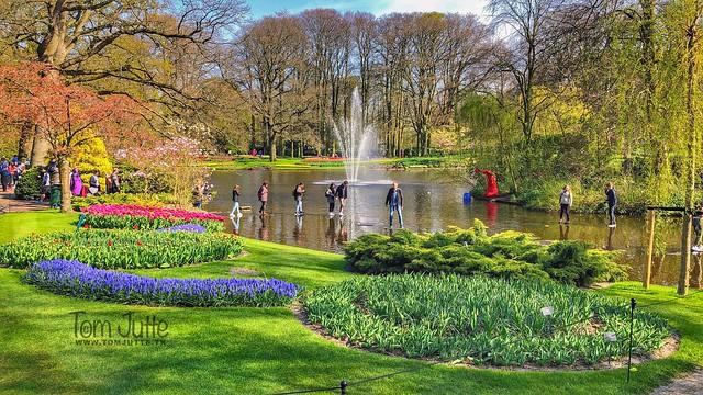 Walking on water, Keukenhof gardens, Netherlands - 2513