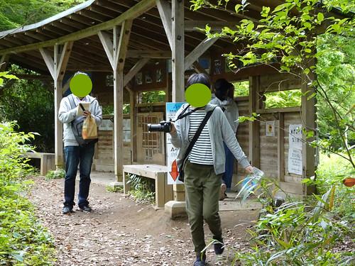 横浜自然観察の森 野鳥観察小屋