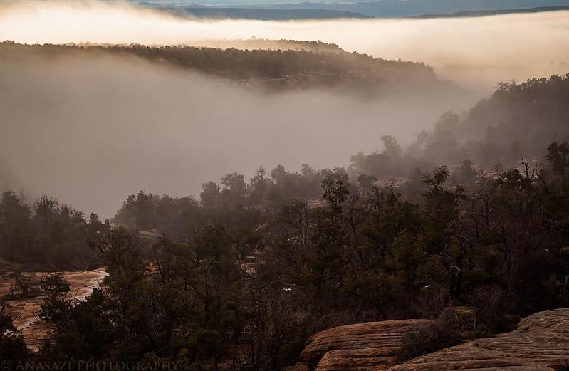 Cedar Mesa Fog