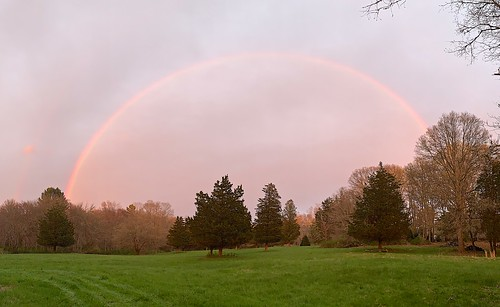 rainbow arch view nature field trees