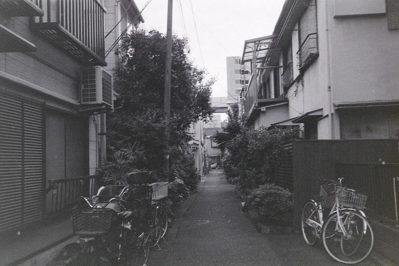 061LeicaM2 Summaron 35mm f35 Kodak 400TX南町