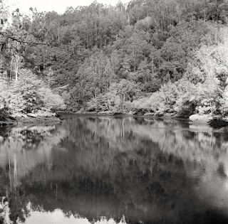 Reflections on the river #1