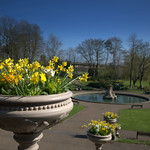 Flowers at Miller Park, Preston